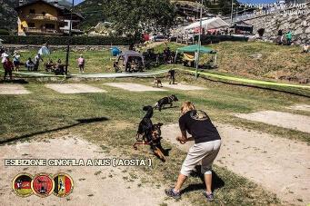Esibizione cinofila a Nus(Aosta) - 11
