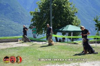Esibizione cinofila a Nus(Aosta) - 4