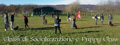 classi_socializzazione