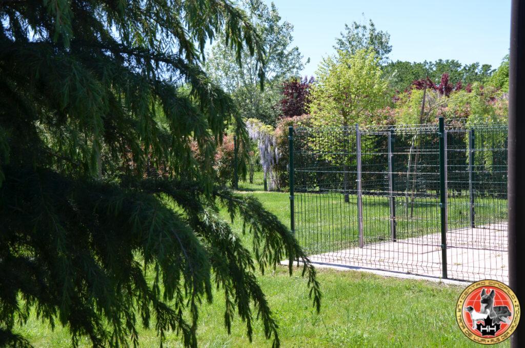Centro Cinofilo LA TANA DEI LUPI Allevamento Rottweiler e Malinois Addestramento Cani Multi Razza Pensione Cani e Gatti a Mercenasco Torino Piemonte 26